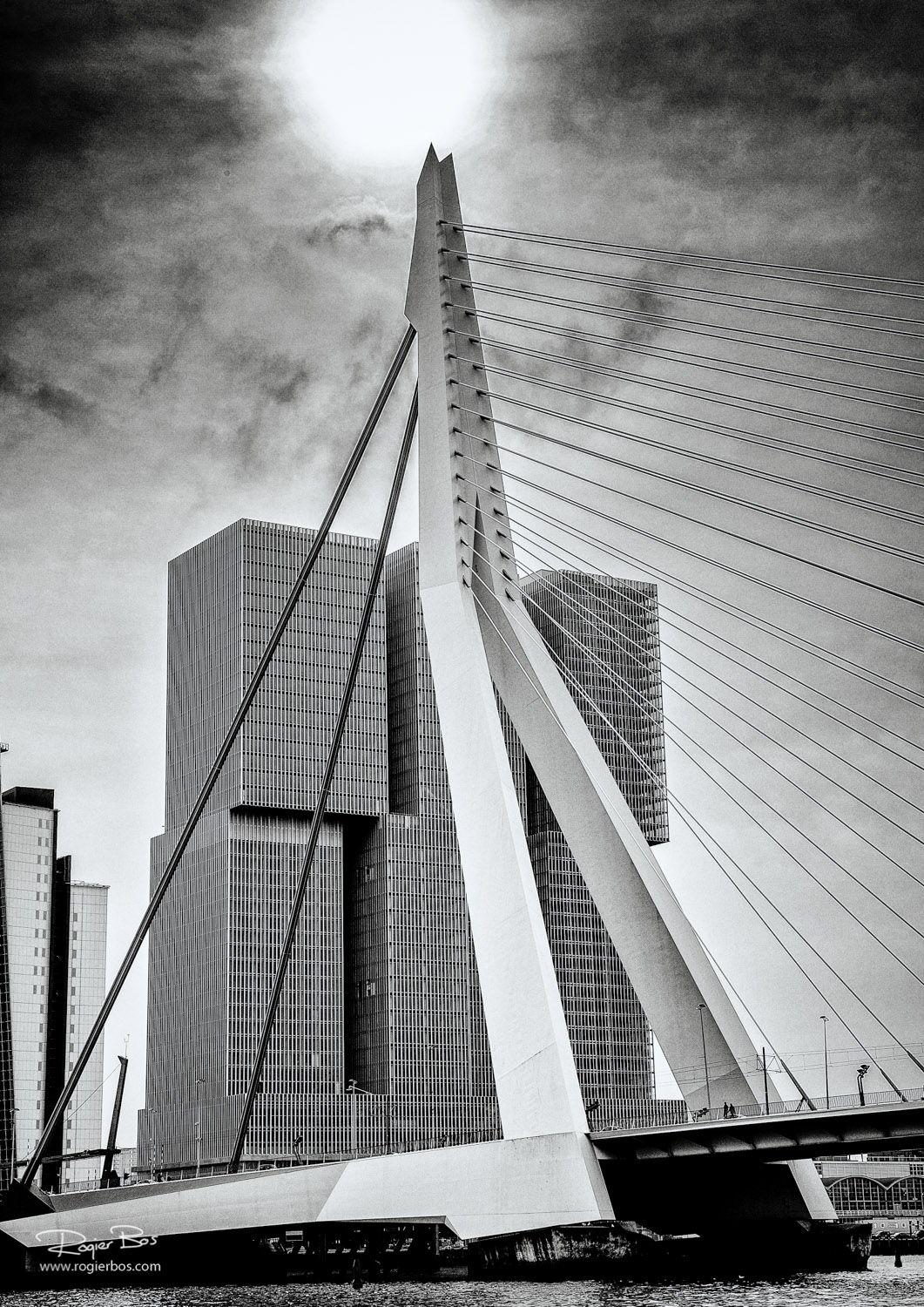 Rotterdam from the water-1