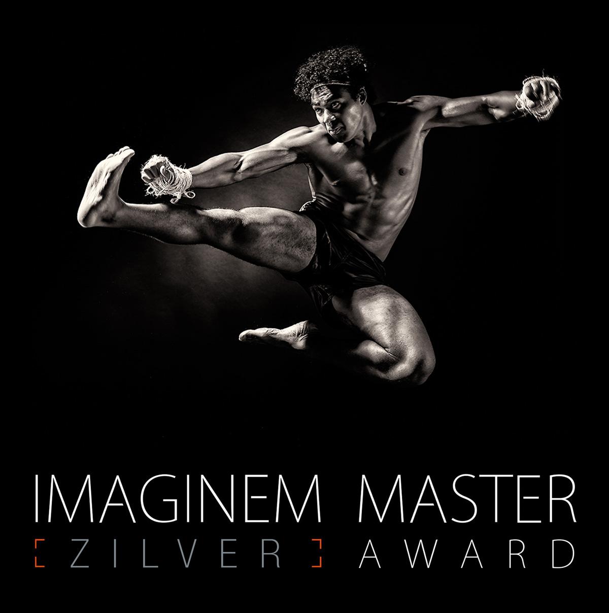 Imaginem_zomer2015_zilver