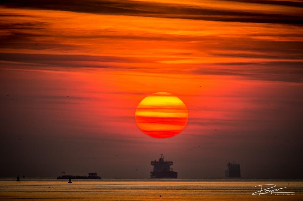 Haven Rotterdam onderdaande zon-10